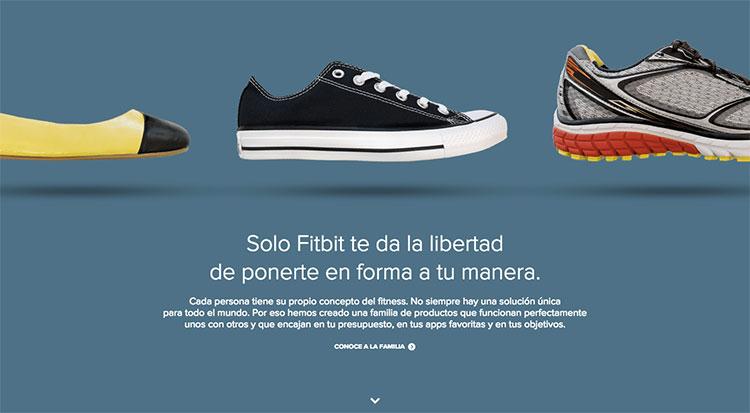 web design fitbit