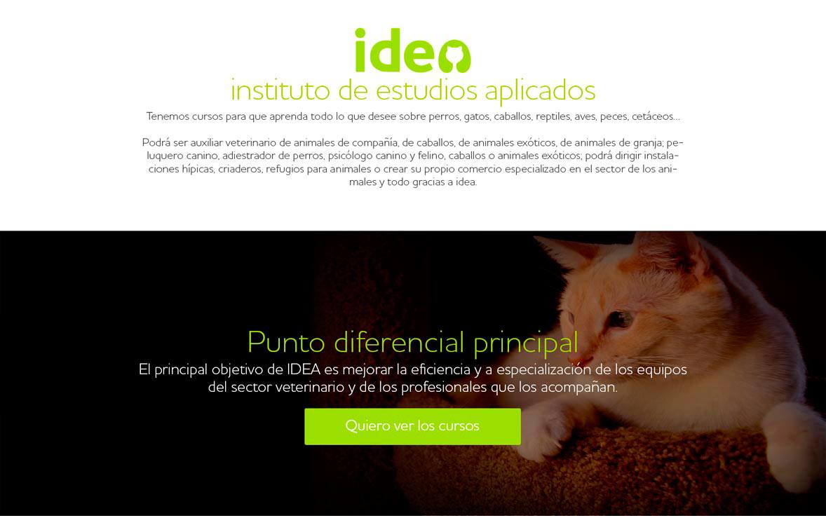 Idea-project4