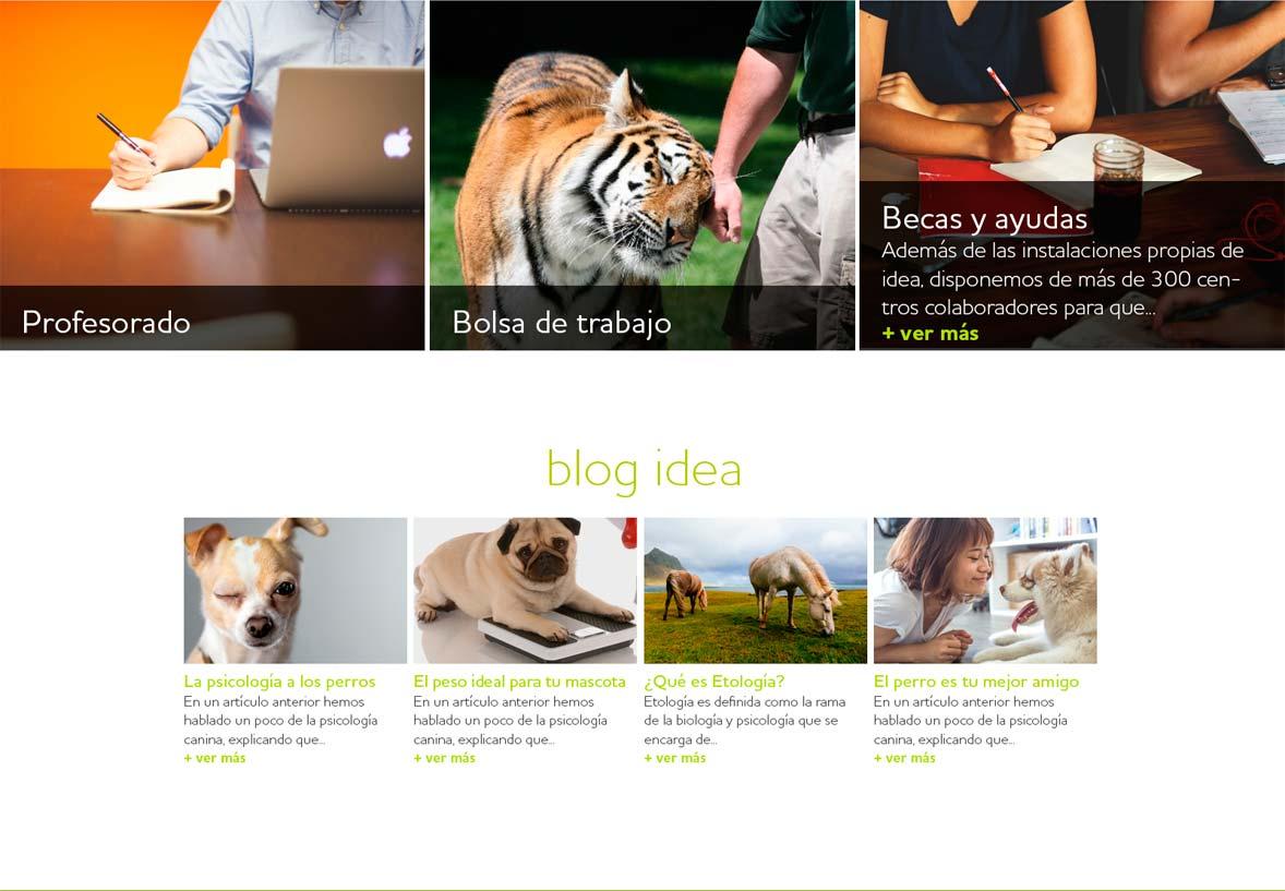 Idea-project5