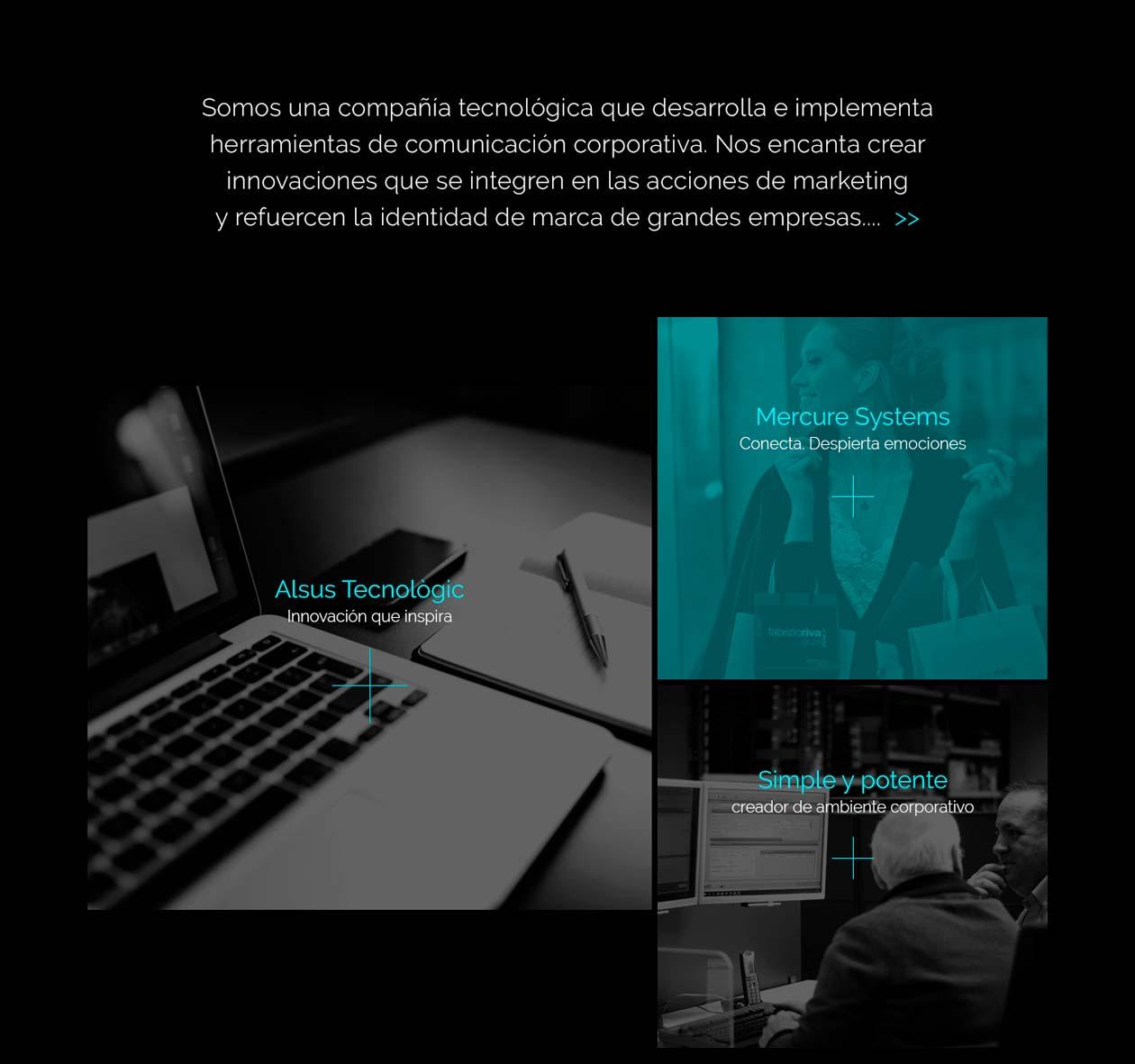 alsus-web-2