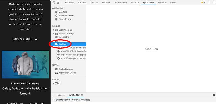 3 pasos para saber qué cookies usa una web
